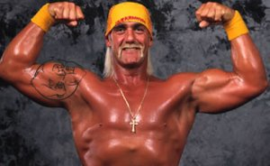 Hulk Hogan or Terry Bollea?